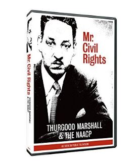 Mr. Civil Rights image