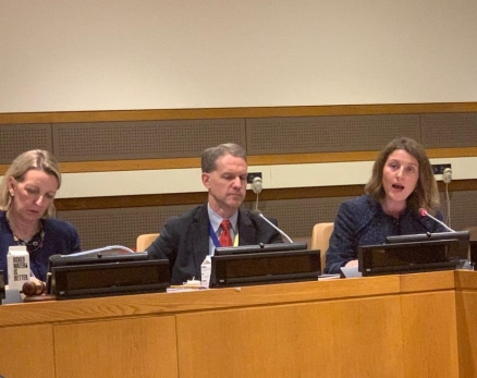 Prof. Nienke Grossman at the U.N.